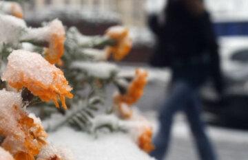 """Озвучен прогноз на последний месяц лета: """"от заморозков до..."""""""