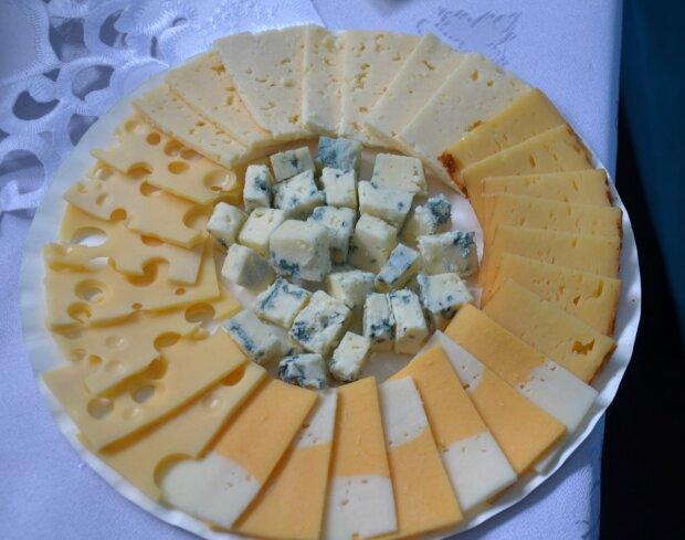 сыр молочная продукция молочные продукты