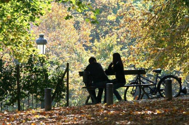 погода, осень, парк, влюбленные