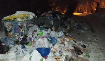 Киев утопает в мусоре: коммунальщики не справляются с вывозом во время снегопадов, фото