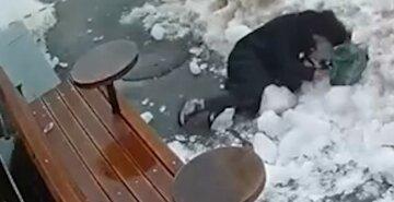 Хотела проскочить: прямо в центре Киеве на женщину упала ледяная глыба, жуткое видео