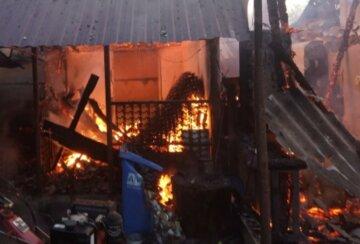 """Мощный пожар вспыхнул на Закарпатье, кадры несчастья: """"погибли двое..."""""""