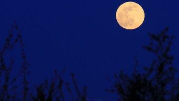 Суперлуние или Цветочная луна: астрологи предупредили украинцев о роковой дате в мае
