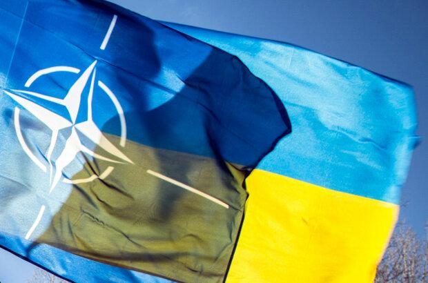 нато украина2