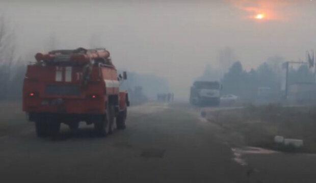 У Чорнобильській зоні знову спалахнула масштабна пожежа: подробиці НП