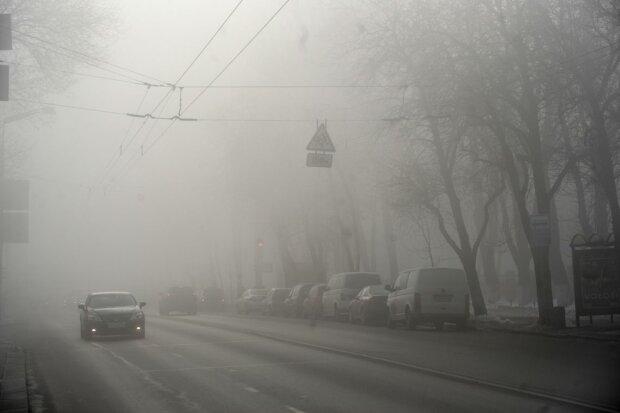 туман, погода