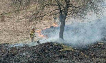 Смертельный пожар разгорелся под Киевом, найдено тело женщины: кадры