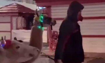 """""""И зарабатывают на этом деньги"""": харьковчане возмутились животному беспределу в центре города"""
