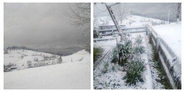 Настоящая аномалия: в конце весны украинскую землю засыпает снегом, кадры