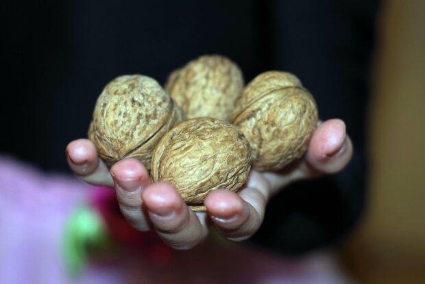 nuts-1839438_960_720