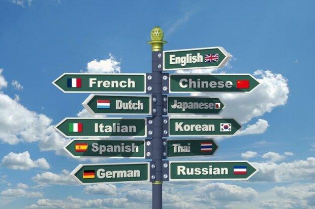 Как быстро выучить иностранный язык: 5 эффективных советов