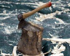 топор, дрова