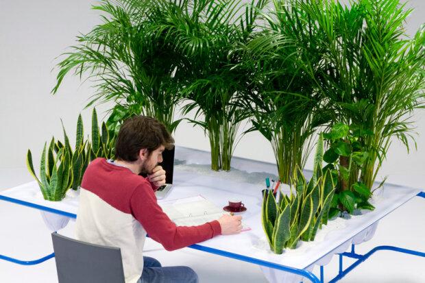 fresh air cubicle