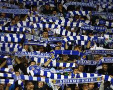 Динамо - Янг Бойз, онлайн-трансляция