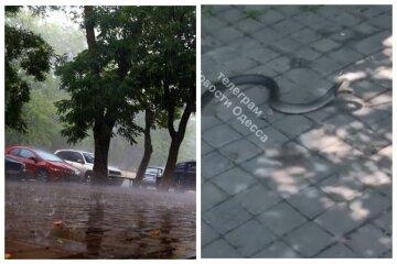 """Після дощу в Одесі повилазили змії, кадри: """"багато біля моря і в центрі міста"""""""