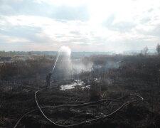 торф пожар тушение горение