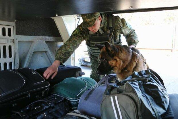 Трогательная дружба полицейского и служебного пса (фото)