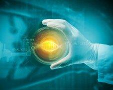 Победить рак: как современная медицина лечит неизлечимое