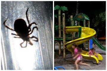 Маленькі «хижаки» атакували дитячий майданчик у Дніпрі, фото: «обліпили все»