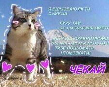 photo5345787141990492476