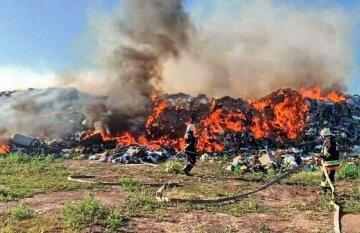 Масштабна пожежа на Одещині затягнулася на 11 годин: кадри НП