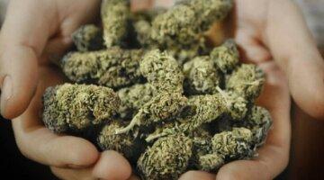 Арешт за зберігання наркотиків можуть скасувати