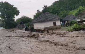 Проливные дожди натворили бед в Украине, затоплены дома и разрушены дороги: кадры масштабного потопа