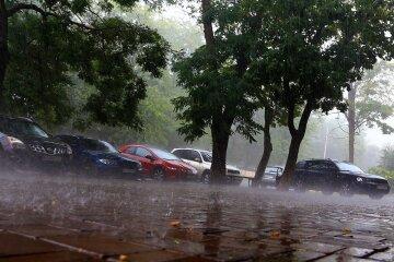 Бабье лето разгулялось по полной в Одессе: когда ждать дождей, а когда +25