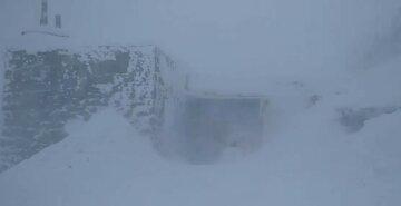 """На украинскую землю обрушилась сильная метель, кадры стихии: """"мощный мороз, штормовой ветер и..."""""""