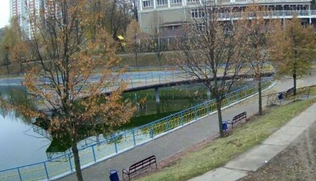 Вандалы устроили небывалый погром в киевских парках на карантине: фото последствий