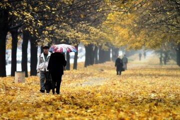 погода, осень