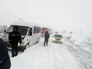 Метели сковали Украину: «зима готовит мощный удар», свежий прогноз