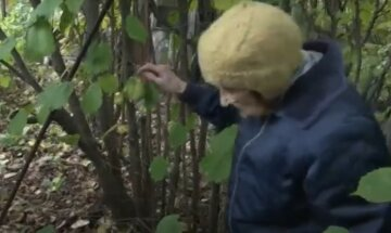 """""""Тобі потрібніше"""": старенька відкопала в своєму саду злитки золота і віддала бідній метері-одиночці"""