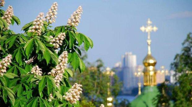 погода-Киев