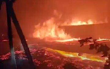 Пожар вспыхнул на базе отдыха под Одессой: видео ЧП