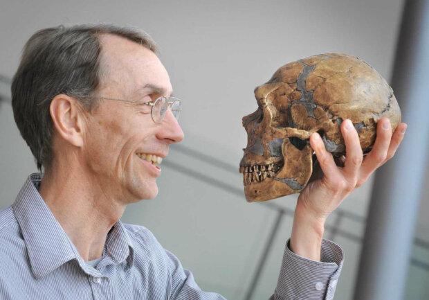 череп наука эволюция