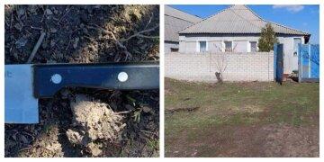 """На Харківщині дружина """"героїчно"""" кинулася захищати чоловіка, фото: """"з ножем напала на..."""""""
