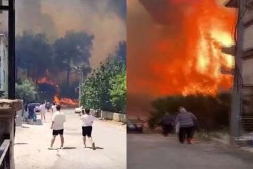 Популярный среди украинцев курорт охватили масштабные пожары, пламя добралось до домов: кадры ЧП