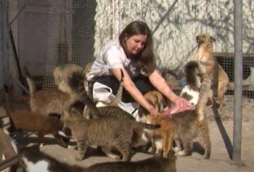 """Українка тримає вдома 70 котів, кадри: """"2 тисячі на тиждень тільки на м'ясне"""""""