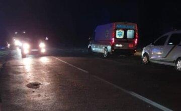 Моторошна ДТП на українській трасі: в авто була вагітна жінка з чотирма дітьми, кадри