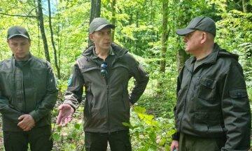 Андрей Малеваный раскрыл, как нужно бороться с вырубкой леса: «Мало утвердить высокие штрафы»