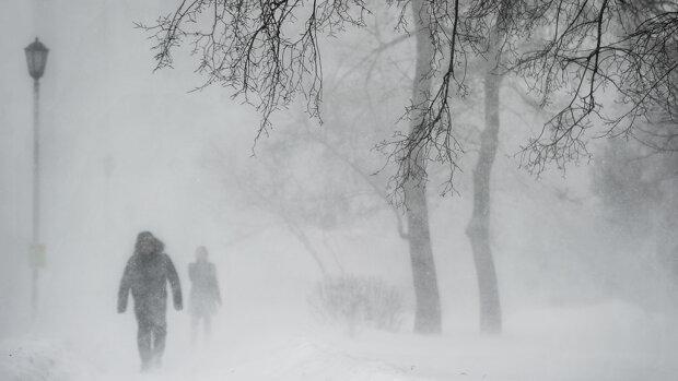 Українцям показали яскраві кадри з засніжених Карпат: Сипте більше