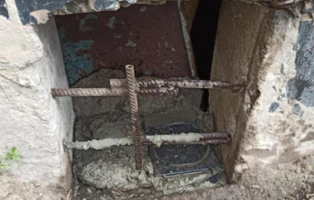 """""""Переносчики коронавируса"""": в Днепре забетонировали котов в подвале, детали вопиющего случая"""