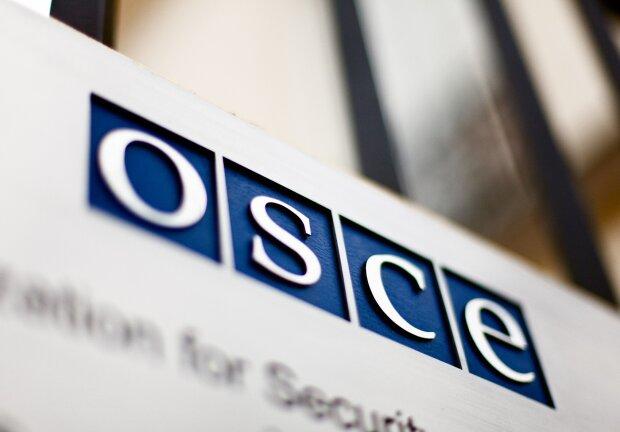 Утечка данных в ОБСЕ: наблюдатели заговорили о кибератаке