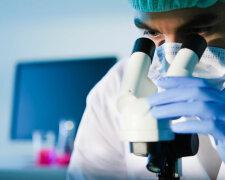 врач, лаборатория, исследование