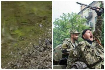 """Донбас стрясло екологічне лихо через бойовиків: """"стали стрімко..."""""""