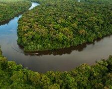 Амазония лес