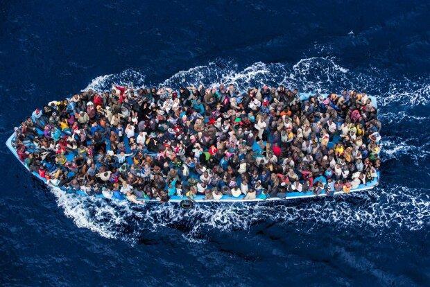нелегалы мигранты беженцы