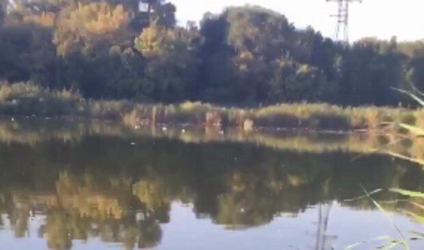 В озере Днепра промышленные отходы уничтожили все живое: видео катастрофы