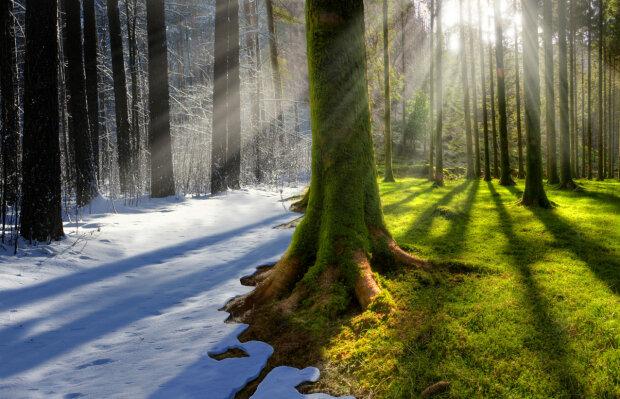 зима лето весна погода